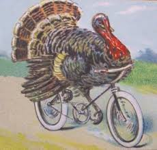 turkeybiking